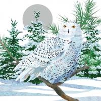 Cocktail Servietten Snow Owl