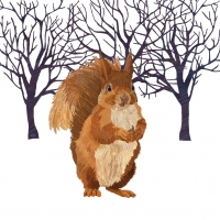 Cocktail napkins Winter Squirrel
