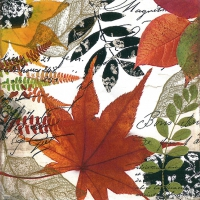 Cocktail napkins Autumn Collage