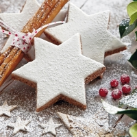 Lunch napkins Cinnamon Stars Cookies