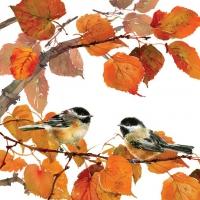 Lunch napkins Autumn Birds