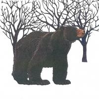 Lunch napkins Winter Bear