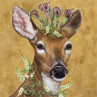Lunch napkins Woodland Princess