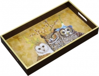 Tray Owl Family