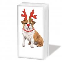handkerchiefs Xmas Bulldog