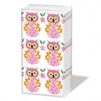 Taschentücher Owl Family