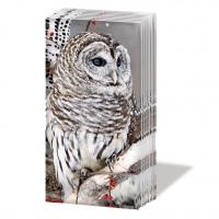 Taschentücher Snow Owl