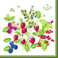 Serviettes lunch Berries