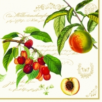 Lunch napkins Fruit Garden