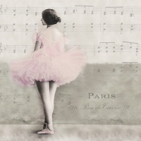 Serviettes lunch Ballet Paris