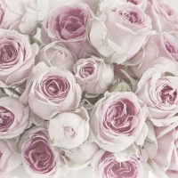 Lunch napkins Pink Roses
