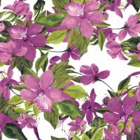Serviettes cocktail  Flowering Clematis pink