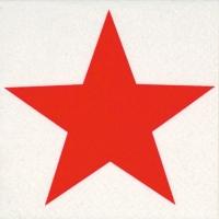 Serviettes de table 25x25 cm - Étoile brillante rouge