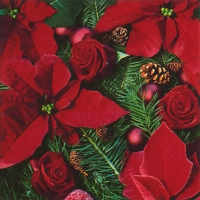 Serviettes lunch Poinsettia with Fir