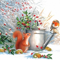 Serviettes lunch Red Squirrel & Robin