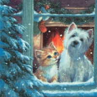 Lunch napkins Westie & Kittin looking out of Window