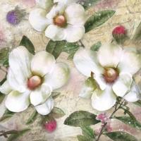 Lunch napkins Trois Magnolias Blanc