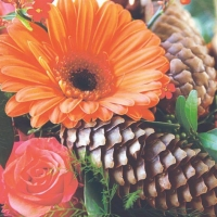 Lunch Servietten Gerbera & Pinecone
