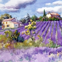 Lunch napkins Lavander Fields Forever