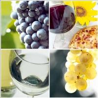 Lunch Servietten Piacere del Vino