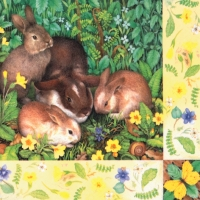 Lunch napkins Four Bunnies