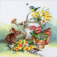 Lunch napkins Bunny with Watering Can