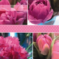 Lunch napkins Tulipes Roses pink