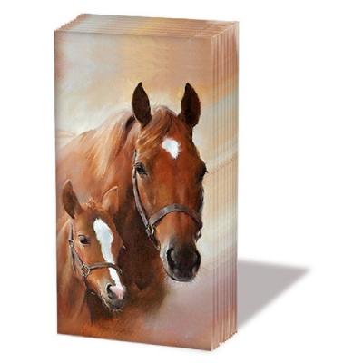 Taschentücher HORSE WITH FOAL,  Tiere,  Everyday,  bedruckte papiertaschentücher,  Pferde