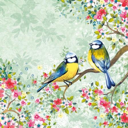 Motivservietten Gesamtübersicht,  Tiere - Vögel,  Everyday,  cocktail servietten,  Vögel