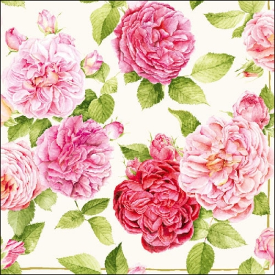 20 Servietten - 33 x 33 cm BEAUTIFUL ROSE CREAM,  Blumen - Rosen,  Everyday,  lunchservietten