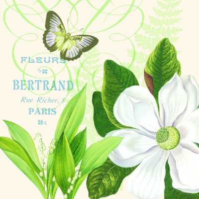 20 Servietten - 33 x 33 cm MAGNOLIA FLEURS CREAM,  Blumen -  Sonstige,  Sonstiges - Schriften,  Tiere - Schmetterlinge,  Everyday,  lunchservietten,  Mispeln,  Mispelblüten