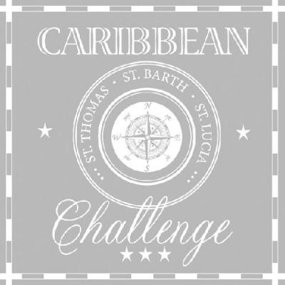 Lunch Servietten CARIBBEAN CHALLENGE GREY