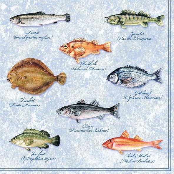 Lunch Servietten FISHES ,  Tiere - Fische,  Everyday,  lunchservietten,  Fische
