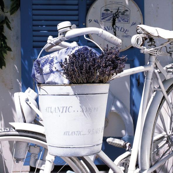 Lunch Servietten Summer Lavender,  Fahrzeuge - Fahrräder,  Blumen - Lavendel,  Everyday,  lunchservietten,  Lavendel,  Fahrrad