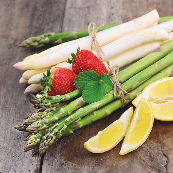 Servietten / Spargel,  Gemüse - Spargel,  Everyday,  lunchservietten,  Spargel