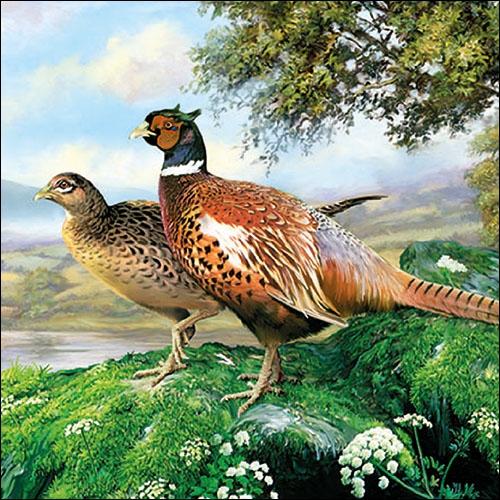 Lunch Servietten Pheasant