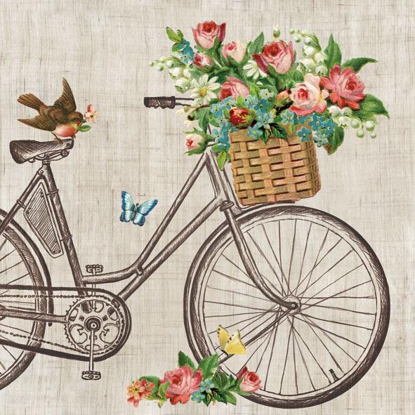 Lunch Servietten Robin On Bike,  Fahrzeuge - Fahrräder,  Everyday,  lunchservietten,  Fahrrad