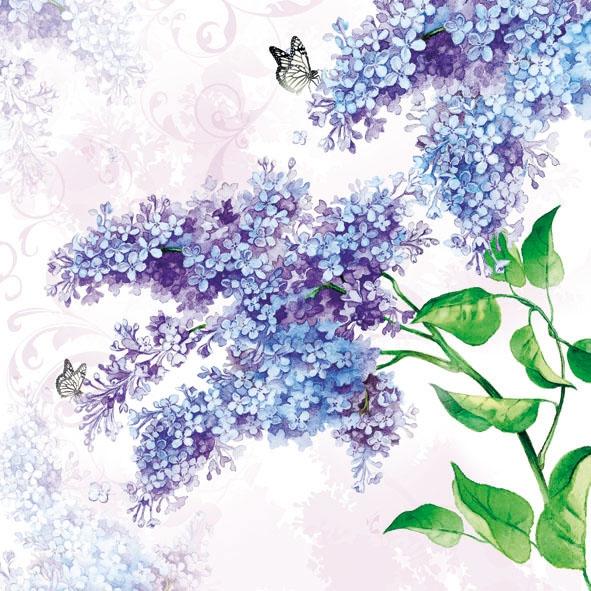 Lunch Servietten Lilac,  Tiere - Schmetterlinge,  Blumen - Flieder,  Sommer,  lunchservietten,  Flieder,  Schmetterlinge