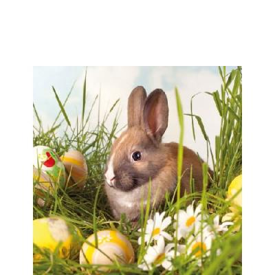Frühjahr / Ostern,  Ostern - Ostereier,  Ostern - Hasen,  Ostern,  cocktail servietten,  Ostereier,  Osterhasen