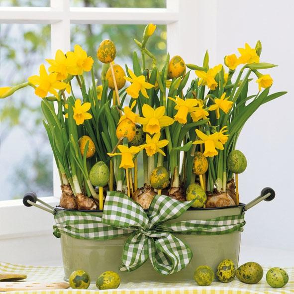 Servietten 25 x 25 cm,  Blumen - Osterglocken,  Ostern - Ostereier,  Ostern,  lunchservietten,  Ostereier,  Narzissen