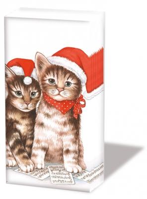 Taschentücher Singing Cats