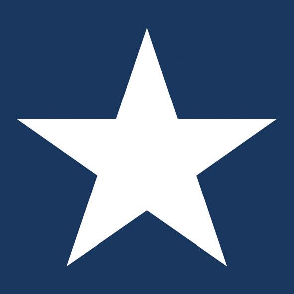 Lunch Servietten STAR DARK BLUE