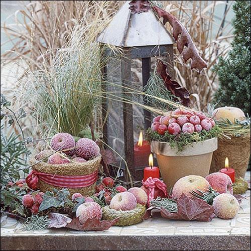Napkins 33x33 cm - Frozen Fruits