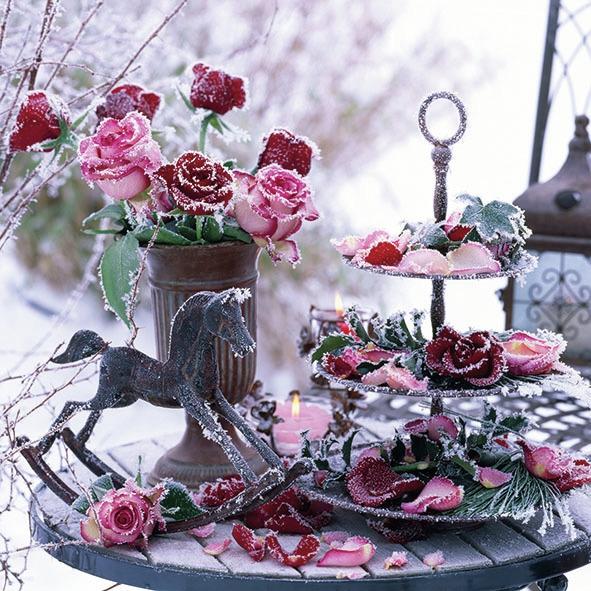 Napkins 33x33 cm - Frozen Roses