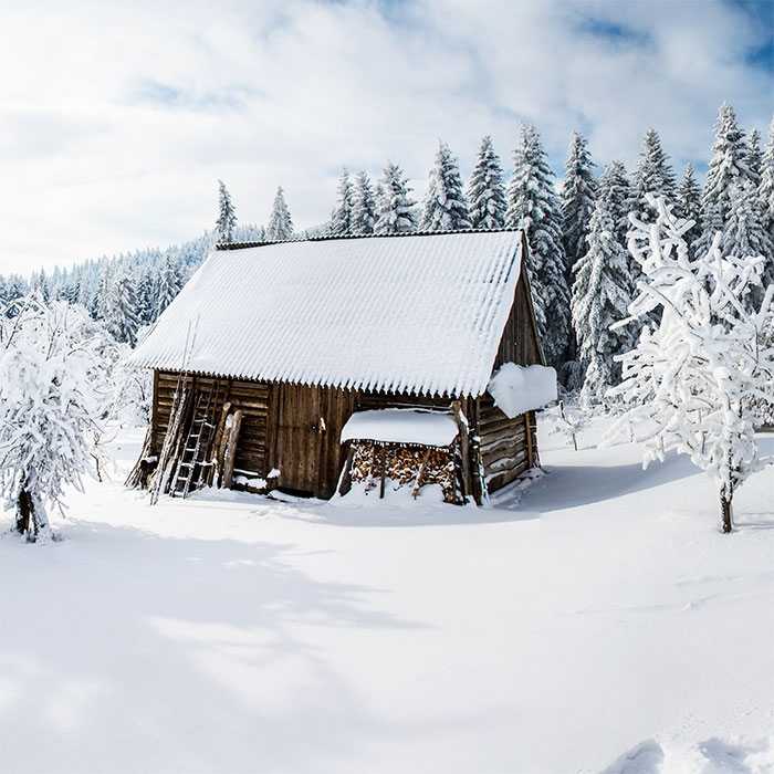 Lunch Servietten Winter Cabin
