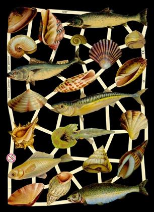 1 Bogen Glanzbilder mit Glimmer ,  Tiere,  Glanzbilder mit Glimmer,  Sonstiges,  Meerestiere,  Muscheln,  Fische