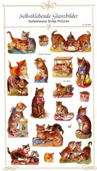 1 Bogen Glanzbilder - selbstklebend - 13,5 x 24,5 cm ,  Sonstiges,  Glanzbilder selbstklebend,  Tiere,  spielende Katzen