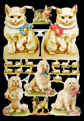 Glanzbilder Katzen&Hunde,Jugendtraum,  Tiere,  Glanzbilder,  Glanzbilder,  Katzen,  Hunde
