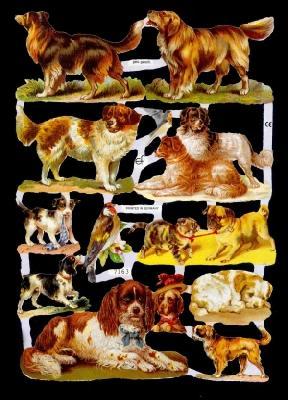 Glanzbilder Hunde,Jugendtraum,  Glanzbilder,  Glanzbilder,  Hunde