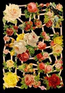Glanzbilder Rosen,Jugendtraum,  Blumen,  Glanzbilder,  Glanzbilder,  Rosen